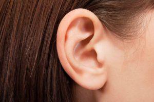 Das Ohr einer Dame.